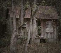 Mrs. Roses House